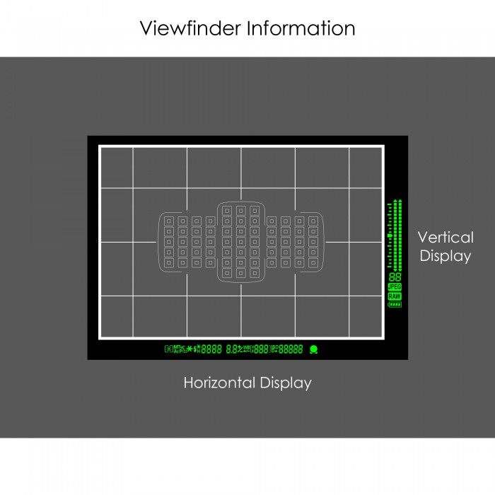Viewfinder Screen All Info