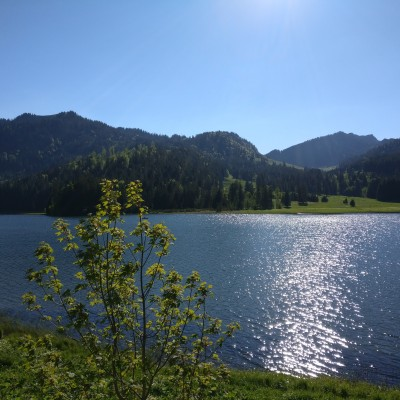 Schliersee - Shot with the OnePlus 3T